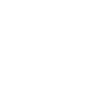 New Paradigm Consulting - The Fresh Approach